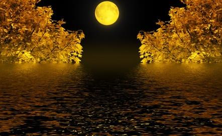 Autumn night(41).jpg