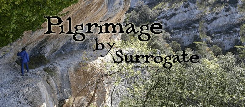 Pilgrimage Surrogate